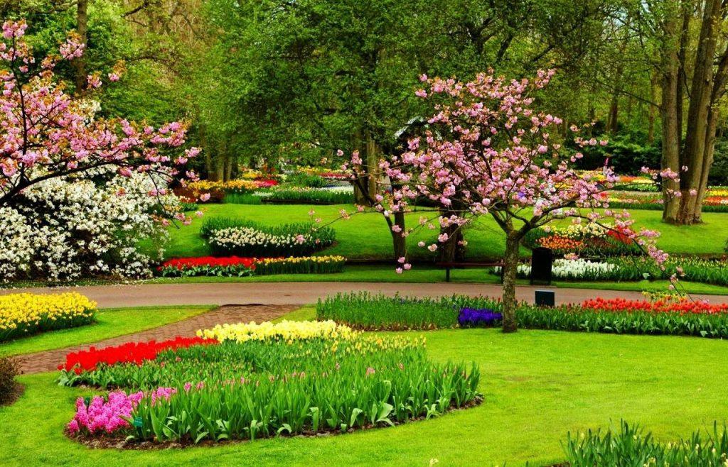 Taman bunga cibodas